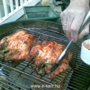 Grill recept Csirke