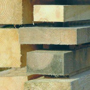 """Mit jelent a """"telített fa"""" kifejezés? -"""